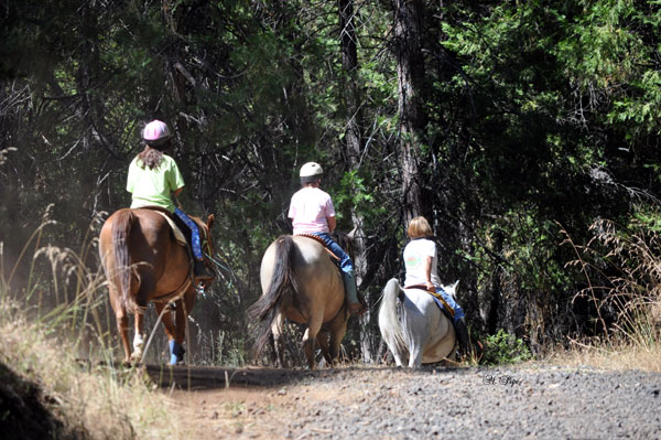 Trail ride & lesson in the Sierra foothills, near Jack Tone Ranch.