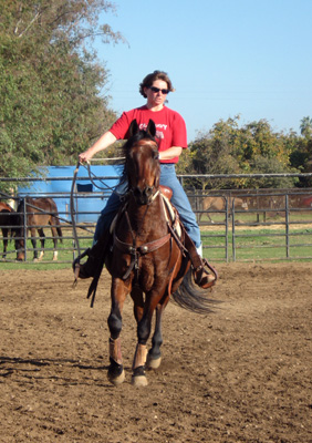 Adult riding lesson, Hammertime Arena at Jack Tone Ranch